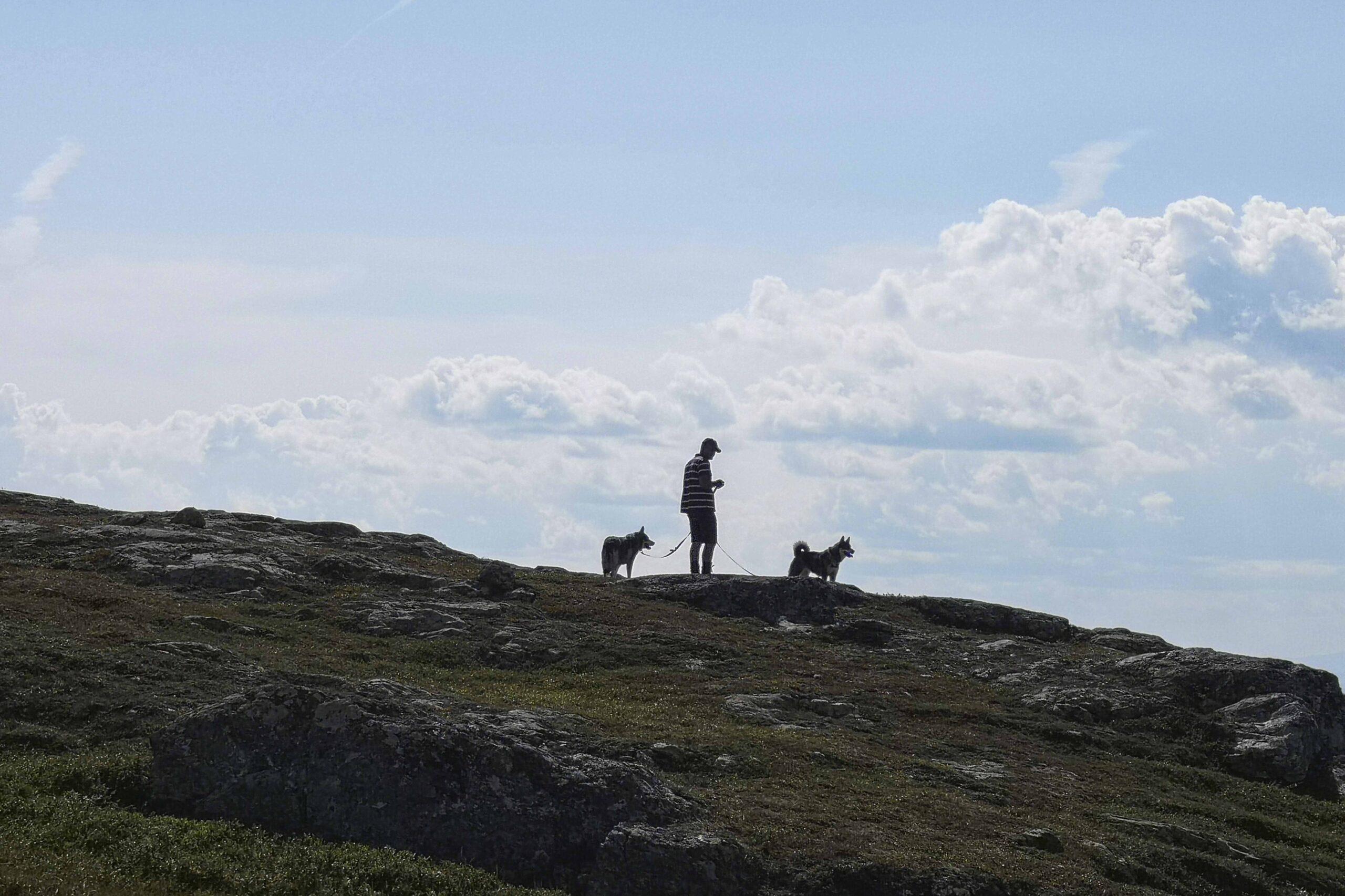 Aursund fjellstyre